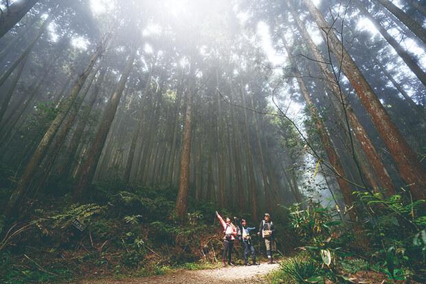 深入新竹絕美山系步道